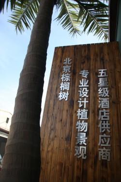 Beijing Palm International Group Ltd.