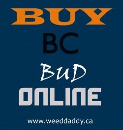 Buy Hash Online