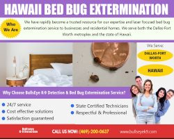 Bed Bug Exterminator | 4692000637 | bullseyek9.com