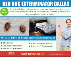 Bed Bug Exterminator Dallas | 4692000637 | bullseyek9.com