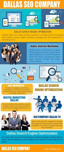 Dallas Search Engine Optimization | intellisea.com