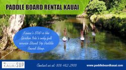 Paddle Board Rental Kauai