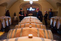 degustazione vini chianti