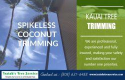 Kauai Tree Trimming