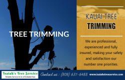 Kauai-Tree Trimming
