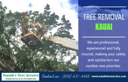 Tree Removal Kauai