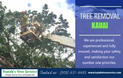 Tree Removal Kauai