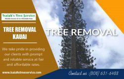 Tree Removal in Kauai