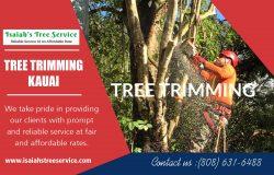 Tree Trimming Kauai