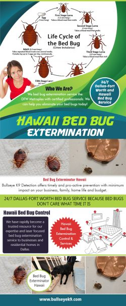 Hawaii Bed Bug Extermination | 4692000637 | bullseyek9.com
