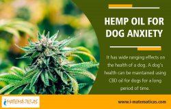Hemp Oil For Dog Anxiety