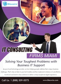 IT Consulting Firms Miami | Call: 1-888-509-0075 | bleuwire.com