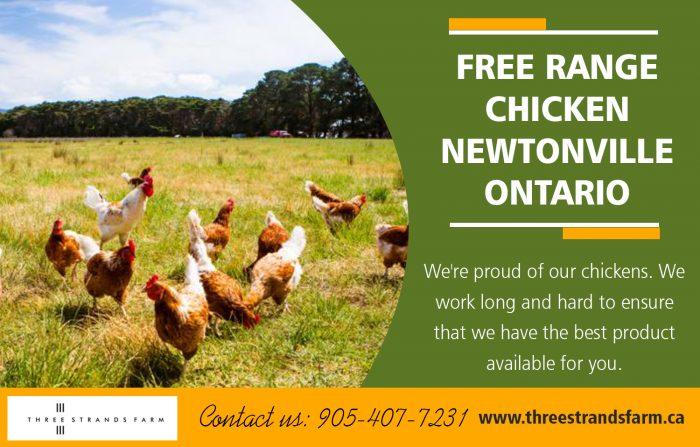 Free Range Chicken Newtonville Ontario