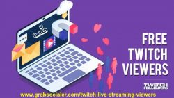 Get Thousands of Twitch followers in quick time