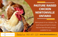 Pasture Raised Chicken Newtonville Ontario