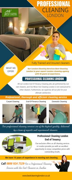 Professional Cleaning London