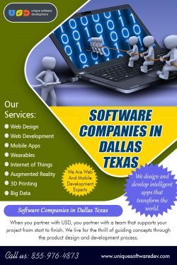 Software Companies in Dallas Texas | 8559764873 | uniquesoftwaredev.com