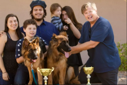 Buy German Shepherd California | Topshepherd Kennel