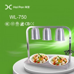 Food Warmer
