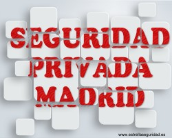 seguridad privada madrid