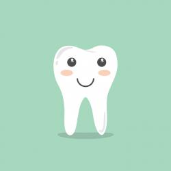 Low Cost Dentist Near Me