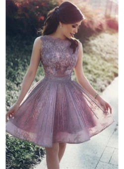 Lace Appliques Open Back Sexy Cheap Homecoming Dresses 2017 Short Hoco Dresses Online_New In Hom ...