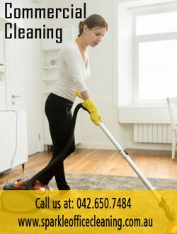 Commercial Cleanings